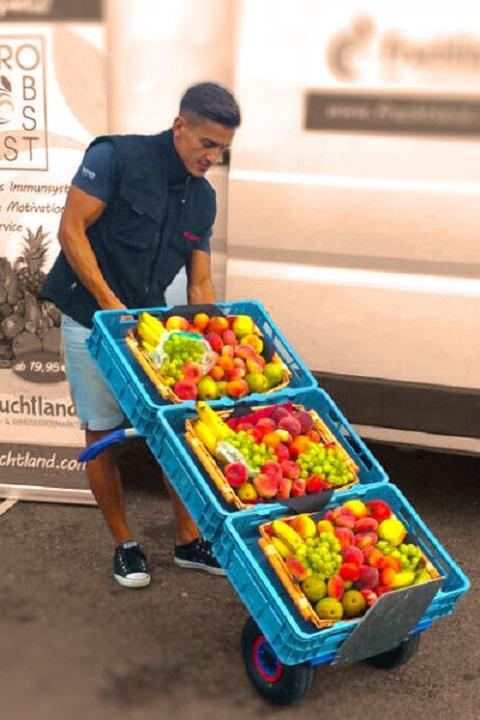 Carretilla Manual 'Favorita' Pala Pequeña EXPRESSO Aluminio Ruedas Neumáticas con cajas de frutas y verduras